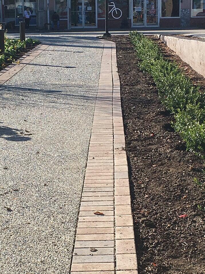 The sidewalk and adjacent plantings